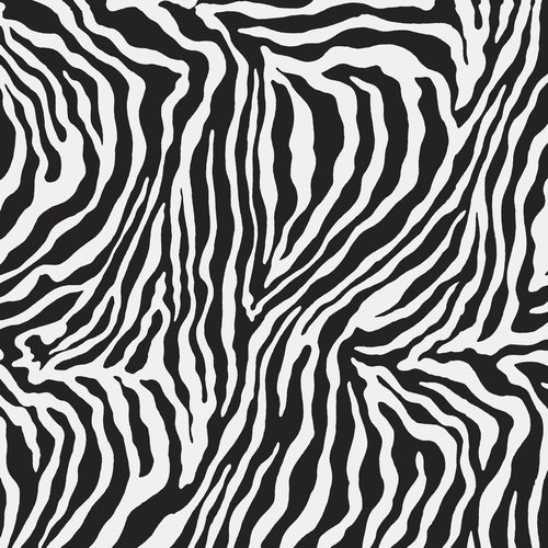 ZEBRA POLISHED RECT. 75X75
